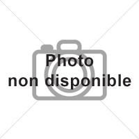CHARNIERE COUPLET 30X75MM LAITON CHROME